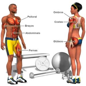 Musculaçãp